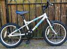Bike Dawes blowfish