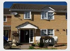 Beautiful 2 bed semi detached house in Cambridge. Need 2 bed around Croydon or bromley.