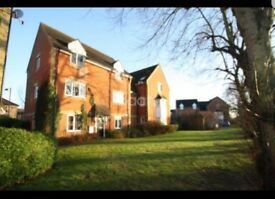 Beautiful 1 bed Ground floor flat with very larg garden
