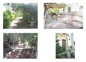 Rent Holiday House in Ostuni