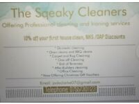 The squeaky cleaners