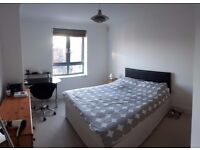 Large double room in modern 3BD flat, Jericho. Available 1 Feb. Single use.