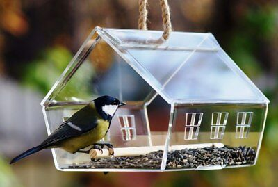 Hanging Bird House Feeder Seed Open Clear Outdoor Garden Design Pet Supplies