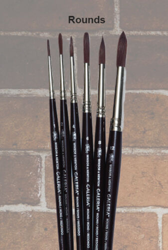 Winsor Newton Brushes 10 assorted shapes & sizes. List $75..Now $15.00