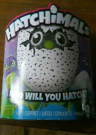 Purple Hatchimal - Most Have Toy of 2016