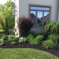 Landscapes, Gardens, Fall Cleanups & Lawns