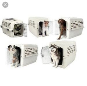 IATA approved pet kennels