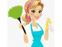 Domestic reliable cleaner