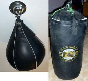 Punching Speed Bag/Fixage + Punching Bag Everlast