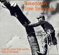 Takedown tree removal service