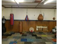 Punch bags (leather), slam man, speed ball
