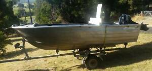 Tinny and outboard consider separating (trailer sold)