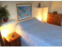 1 bedroom apt avail immediately for short or long term*