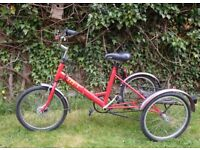 Pashley Tri-1 adult folding tricycle