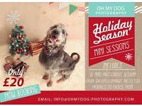 Pet Potography SALE Mini Sessions Christmas Photoshoot