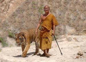 """Beautiful 24""""x36"""" High Definition """"BUDDHIST MONK"""" Picture."""