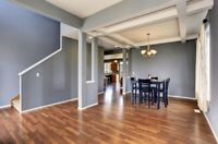 PAINTING SERVICES PROFESSIONAL PAINTERS