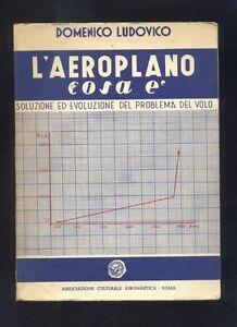 D-Ludovico-L-039-aeroplano-cosa-e-soluzione-ed-evoluzione-del-problema-del-volo-R