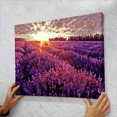 "16"" x 20"" DIY Paint By Number Kit Acrylic Painting On Canvas - Provence"