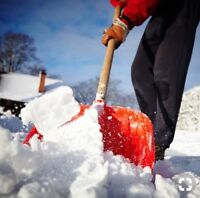 Don't want to shovel your walks? Well look no further!