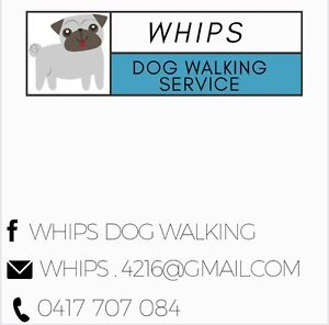Whips dog walking in Pardise point Paradise Point Gold Coast North Preview