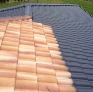 Roof painting and cleaning ( free quote , good price ) Camden Camden Area Preview