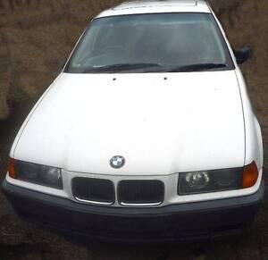 1995 BMW  318i Sedan White Eumundi Noosa Area Preview