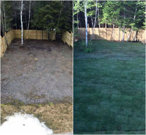 FREE QUOTES ON SODDING/SEEDING /ALL OTHER LANDSCAPING NEEDS!