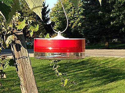Try us for Five Bucks! - Healthy Hummingbird Feeder™  MADE IN USA -Free Shipping