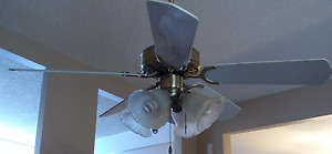 """Brass and White 44"""" Ceiling Fan"""