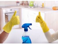 Professional House Cleaner with plenty of experience