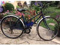 Woman's Raleigh Commuter bicycle