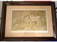 framed dog in a manger picture