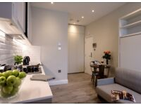 Sleek and newly finished luxury apartment in West Hampstead, all inclusive! Ref: HA113WEL22