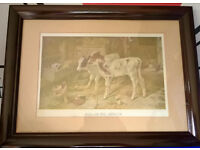 framed dog in a manger picture