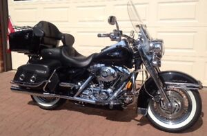 Harley: Tour, Cruise, c/w covered trailer, everything for biking