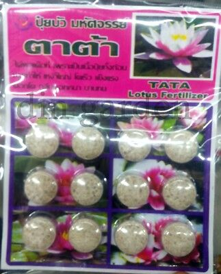 1 pack FERTILIZER TABLET FOR LOTUS WATER LILY FISH SAVE BEST