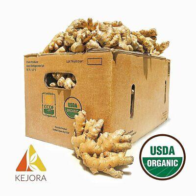 KEJORA Fresh Organic Ginger 2 LB