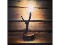 Red Deer Antler Lamp