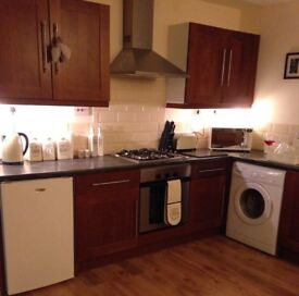 House wanted in full time employment max rent £700 pcm