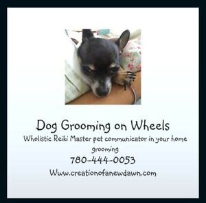 Dog Grooming on Wheels 1989 in home pets