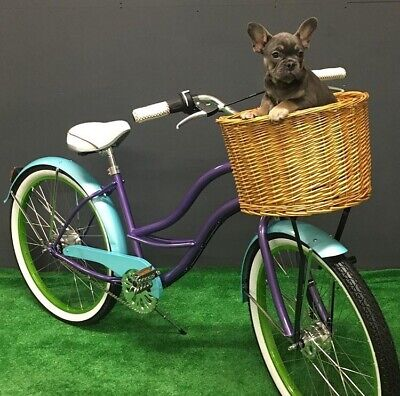 New British Rule Women's Basket Bike, 3 Speed Ladies Classic Bike