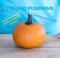 PEEKING PUMPKINS STARTING AT JUST $2.00 EACH