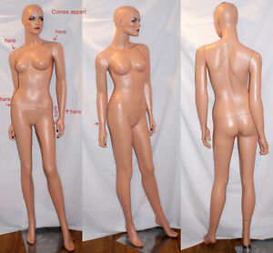 Life-Like Full Size Display Dressform/Mannequin...
