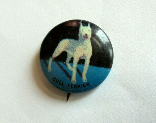 Cool Vintage Bull Terrier Dog Canine Breed Collectible Pinback Button