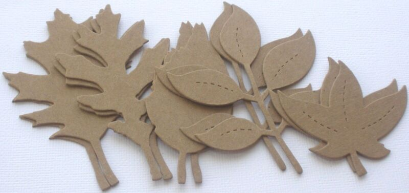 {10} ASSORTED FALL LEAVES - Autumn Leaf Foilage  -  Bare Chipboard Die Cut