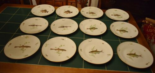 12 RICHARD GINORI Dinner Plates Fish ITALY ~ Beautiful ~ Excellent Condition!