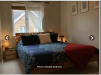 Female lodger wanted - Central Swindon flat
