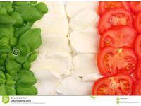 ITALIAN PRIVATE LESSONS/INTENSIVE PRIVATE TUITION - Professional native Italian teacher