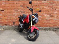 Honda MSX 125 Grom ONLY 2000 Miles Mint Condition NOT r125 mt125 Yamaha